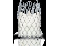 Система транскатетерної iмплантацiiї аортального клапана ALLEGRA/ALLEGRA TAVI System TF